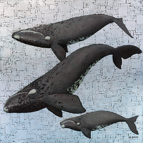 The Studio Art Gallery - Whale Season by Marc Alexander