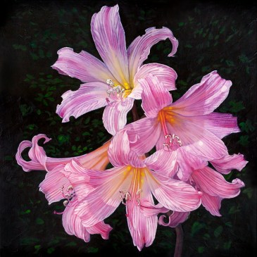 The Studio Art Gallery - Therese Mullins - Perfectly Imperfect