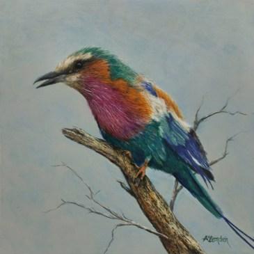 The Studio Art Gallery | 2021 Mandela Day Block Art Exhibition | Angela Van Lienden - Lilac Breasted Roller