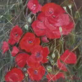 The Studio Art Gallery   2021 Mandela Day Block Art Exhibition   Cilla Hofmeyr - Wayside Poppies