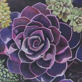 The Studio Art Gallery   2021 Mandela Day Block Art Exhibition   Kim Carstens - Diversity of Succulents