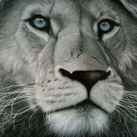 The Studio Art Gallery   2021 Mandela Day Block Art Exhibition   Marc Alexander - White Lion II