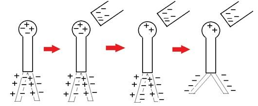 muatan listrik statis