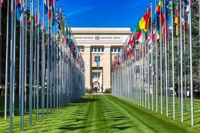 Lorganizzazione Delle Nazioni Unite Onu