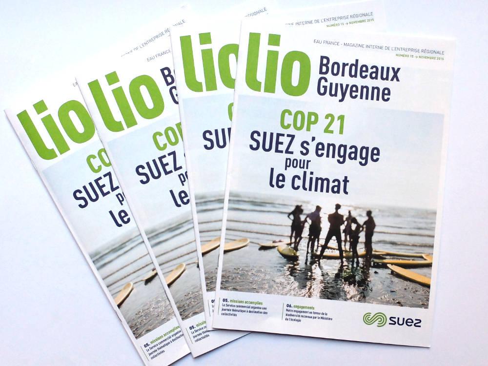 <h3>Suez </h3></br>Journal interne