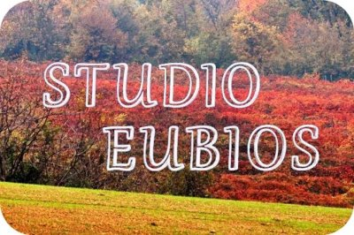 Studio_Eubios_logo