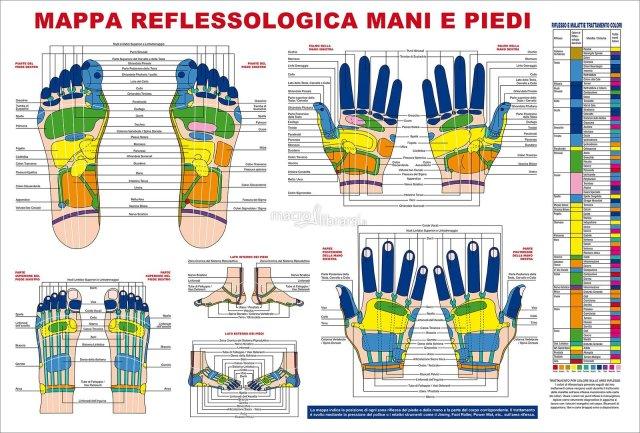 mappa-reflessologia-mani-e-piedi-poster-99934