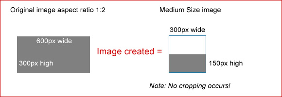 Medium Size image example 3