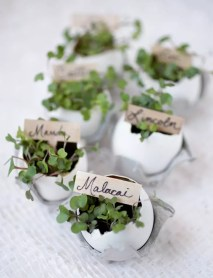 Egg shells and greens : http://themerrythought.stfi.re/diy/eggshell-place-card-holders?sf=ooalkpk#aa