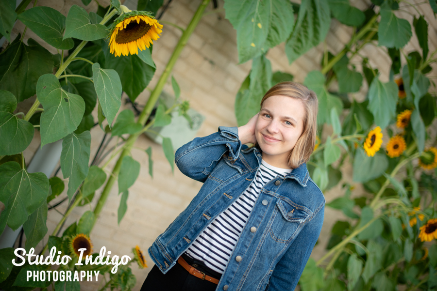 Senior picture of girl walking in front of sunflowers looking at the camera