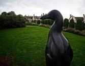 """Great Auk"" by Todd McGrain - View # 3"