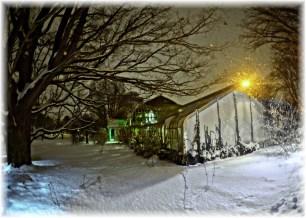 Lamberton Conservatory December 15, 2013 Side View