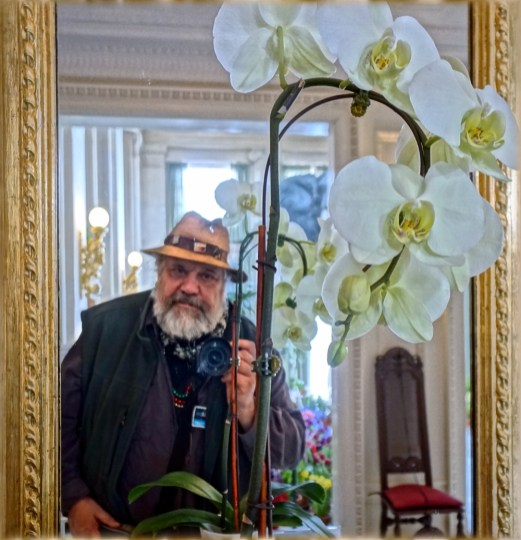 Self Portrait with Orchid at George Eastman Museum's Dutch Connection Event