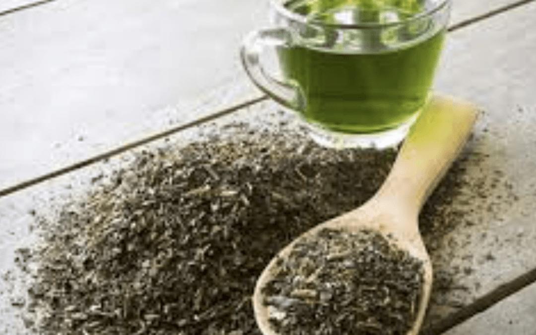 L'estratto di tè verde preserva l'attivazione neuromuscolare e previene il danno muscolare negli atleti sottoposti a fatica cumulativa.