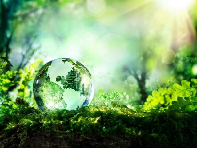 sicurezza ambientale