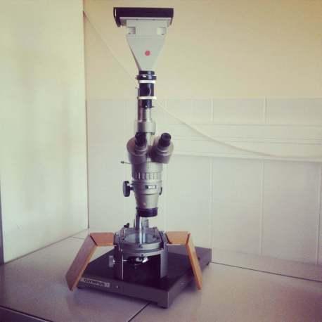 SZ StereoMicroscope