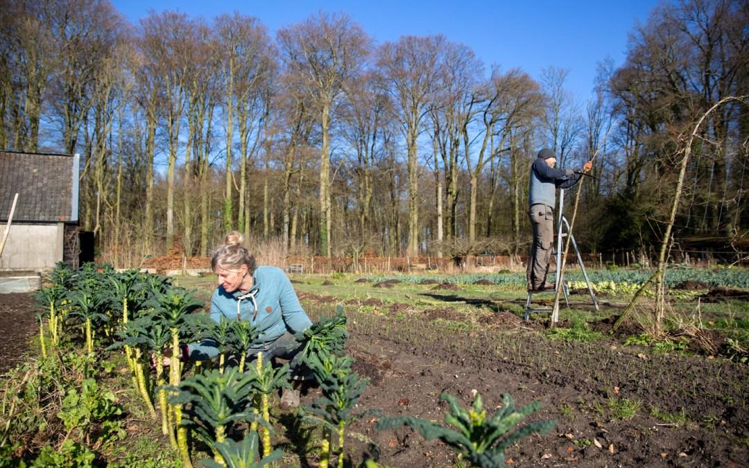 La Chose Commune saison 2 – Dossier agriculture biologique 2