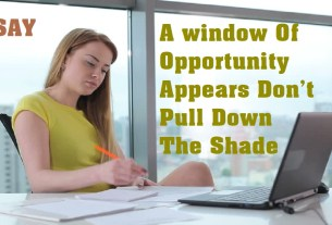 If A window Of Opportunity Appears Don't Pull Down The Shade