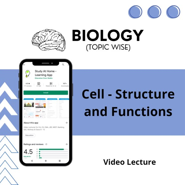 Cell - Structure and Functions