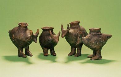 Prehistoric baby bottles