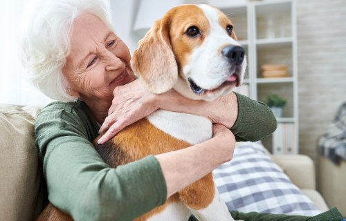 Older dog owner