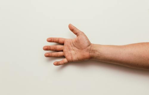 Person's arm and hand