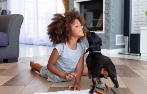 Dog kissing cute little girl