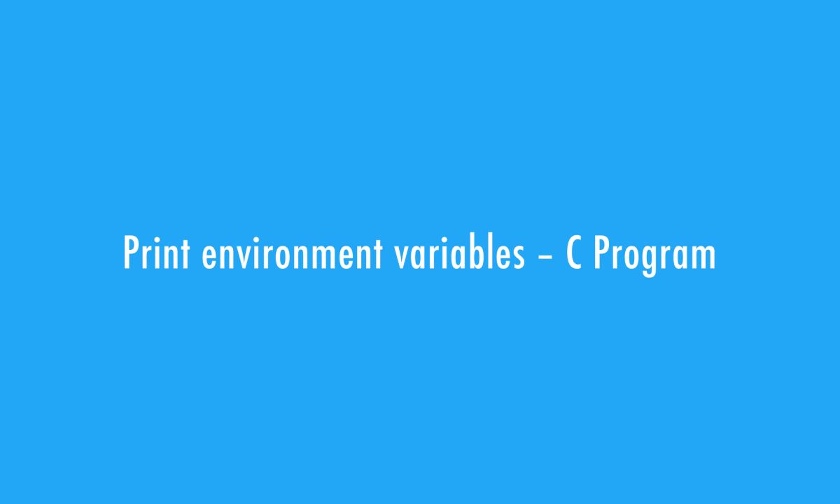 Print Environment Variables
