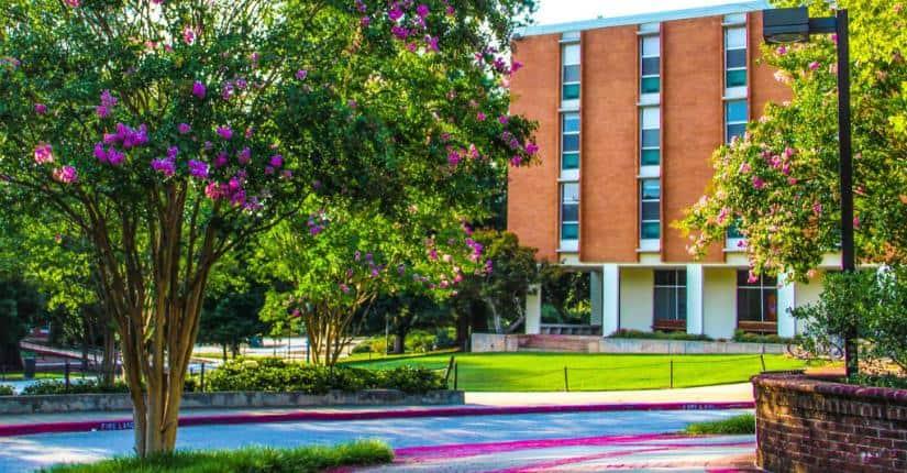 Clemson University 克雷門森大學