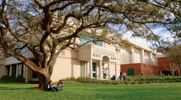 University of South Florida 南佛羅里達大學