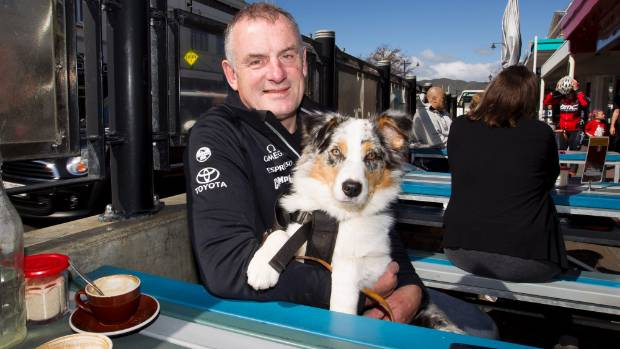 Trevor Mallard may yet be welcome to bring his dog Violet to Jackson St when visits for a coffee. Maarten Holl/Fairfax NZ.