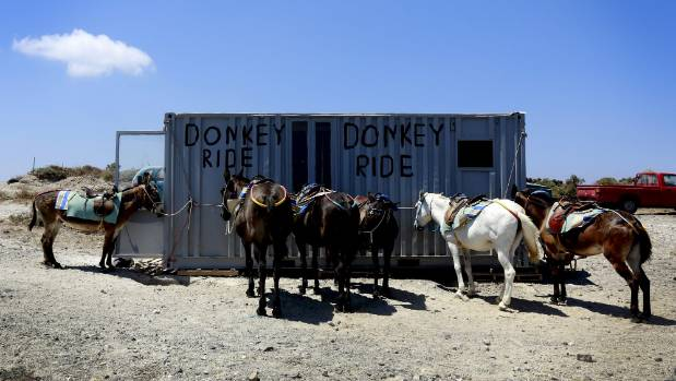 Donkey rides are advertised near the village of Fira on the Greek island of Santorini.