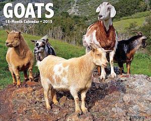 Goats 2015 Wall Calendar