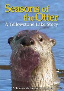 Seasons Of The Otter DVD