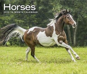 Horse Wall Calendar 2015