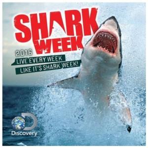 Shark Week 2016 Wall Calendar