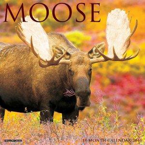 Moose 2016 Wall Calendar