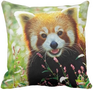 Red Panda Throw Pillow