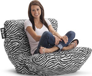 Big Joe Zebra Print Chair