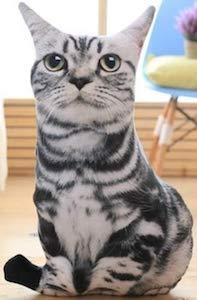 3D Cat Pillow