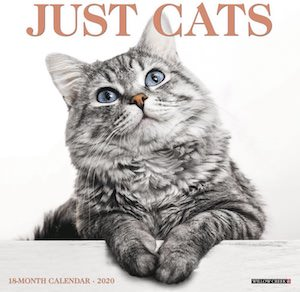 2020 Just Cats Wall Calendar