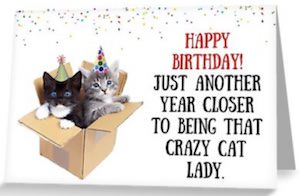 Box Of Cats Birthday Card