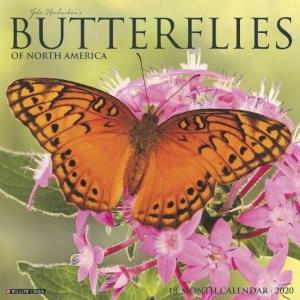 2020 North America Butterflies Wall Calendar
