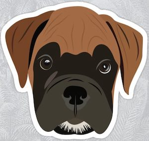 Boxer Puppy Sticker