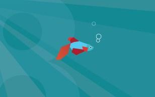 Beta Fish 1920x1200