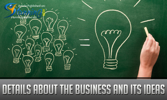 Details about the Business and its Ideas