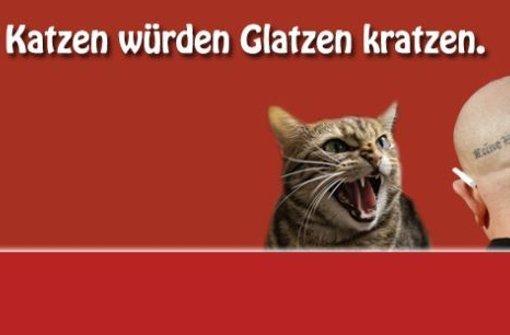 stz| mit katzen gegen glatzen | prof. dr. hajo funke
