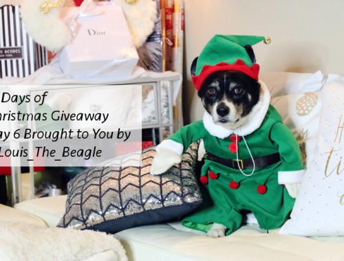 12 Days of Christmas Giveaway, Louis beagle, Santa's little helper