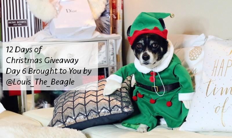 12 Days of Christmas Giveaway, Louis beagle, Santa's little helper