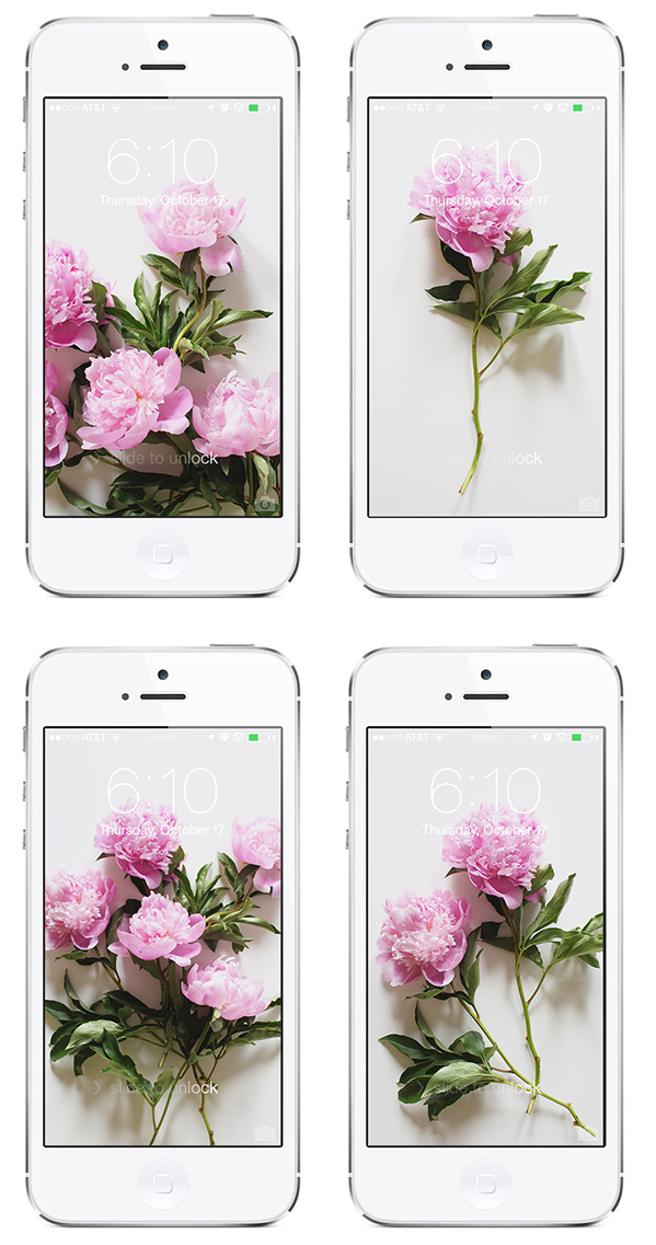 Style Bee - Decked Out Digital - Peonies